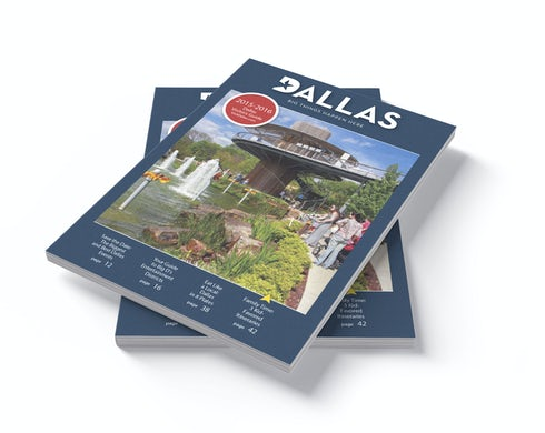 Stack of DCVB Visitor's Guides