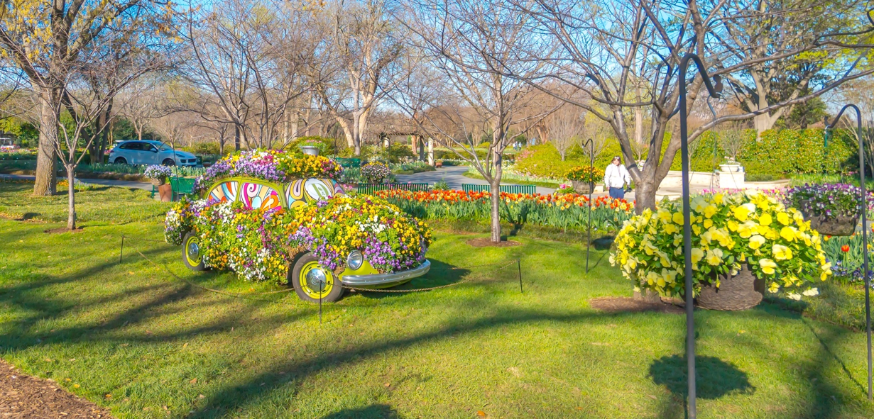 Dallas blooms 2017 at the dallas arboretum and botanical - Dallas home and garden show 2017 ...